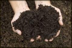 Garden Blend Mulch